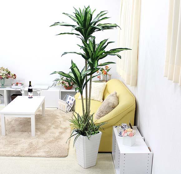 【光触媒】 人工 幸福の木 約1.6~1.7m オリジナル寄せ植え仕立て+選べる陶器鉢