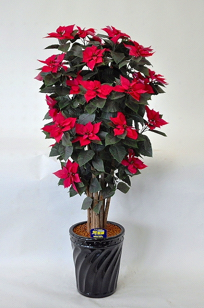ポインセチア 立ち木型 光触媒アートフラワー(造花)クリスマスシーズンのお部屋に定番のポインセチアはいかがですか。クリスマスのプレゼントやお歳暮ギフトにも喜ばれます。