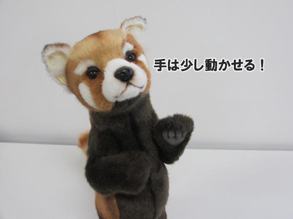 [ハンサ][7252]レッサーパンダ 37hansa レッサーパンダ red pandaれっさーぱんだhansa HANSA リアルな動物のぬいぐるみ