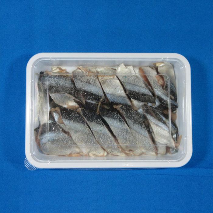 急速冷凍 サンマ切身 釣り餌 低価格化 激安価格と即納で通信販売 えさ 冷凍エサ さんま サシエサ