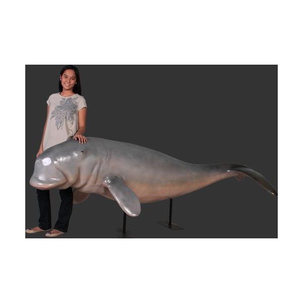 代引不可-全長2.9m!全長2.9m!ジュゴン巨大フィギュア・スタンドタイプ じゅごん(等身大フィギュア) dugonga sea pig dugong figure sea cow Dewgong 海牛目 店舗/店頭/看板/オブジェ/ディスプレイ/シンボル/置物/アート送料別途見積