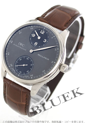 IWC IW544404 watches watch boltgise mens
