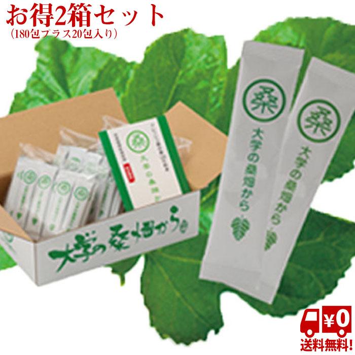 【送料無料】大学の桑畑から2個セット(180包プラス20包入り)桑茶 天然健康食品 健康茶【HLS_DU】 [P]