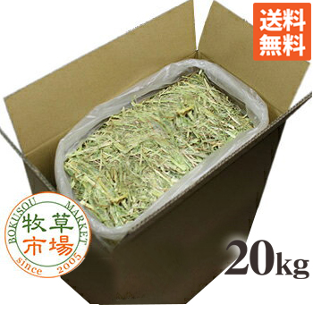 牧草市場 人気の製品 オーツヘイ スーパープレミアムグレード 20kg袋入 業務用 激安セール