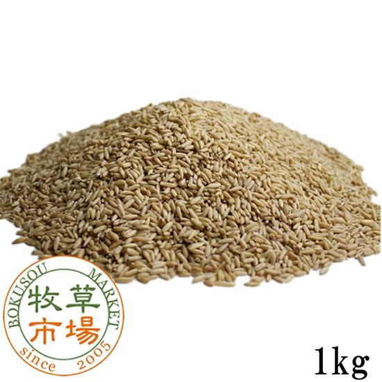 牧草市場 えん麦 1kg(殻なし)