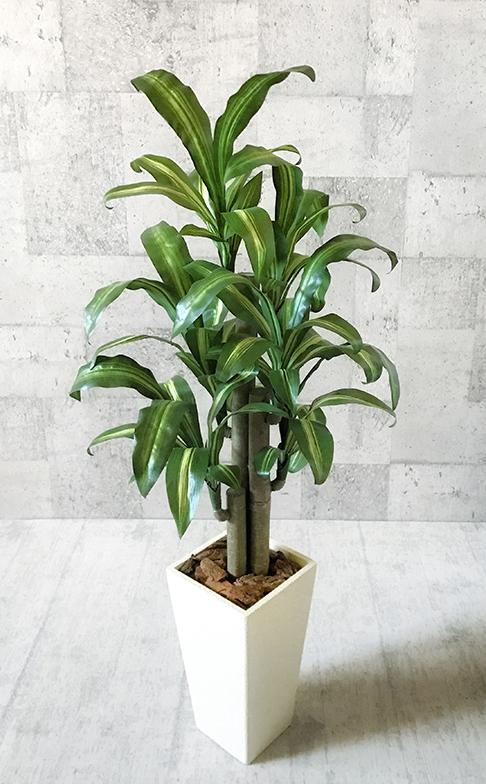 【送料無料】幸福の木:100cm【人工観葉植物】 【フェイクグリーン】 【おしゃれ】 【観葉植物】 【造花】 【光触媒】 【大型】