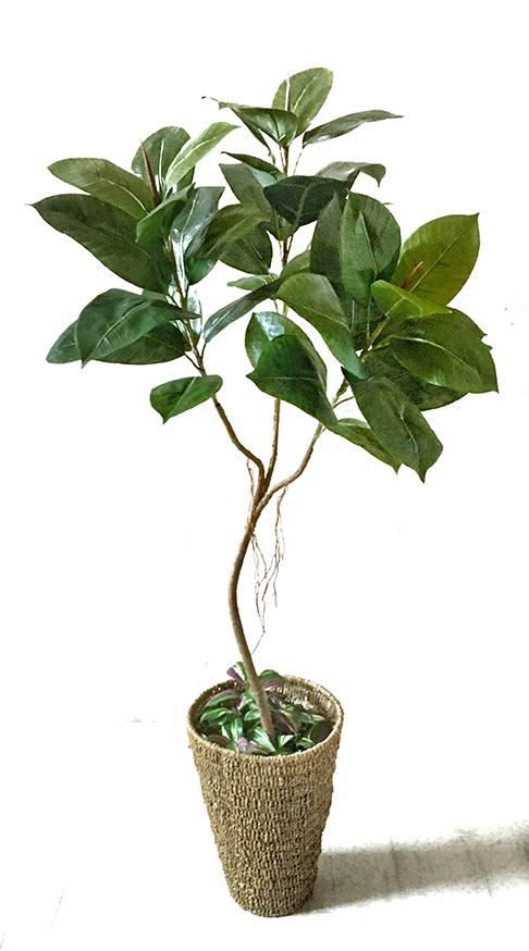 【送料無料】ゴムの木135cm/シーグラスの鉢カバー付き【人工観葉植物】【フェイクグリーン】 【おしゃれ】 【観葉植物】 【造花】 【光触媒】 【大型】 【少し訳あり】