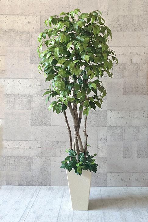 【送料無料】ナチュラルベンジャミン150cm(鉢色:ホワイト【人工観葉植物】 【フェイクグリーン】 【おしゃれ】 【観葉植物】 【造花】 【光触媒】 【大型】ナチュラルベンジャミン150cm(鉢色:ホワイト