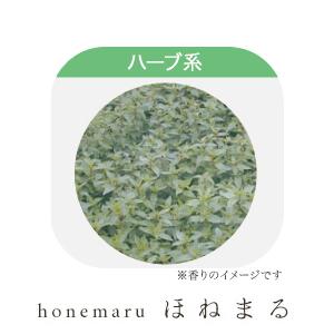 (送料無料)エッセンシャルオイル ペパーミント(アヴェンシス) 100ml 上質な香りでリラックス効果抜群!