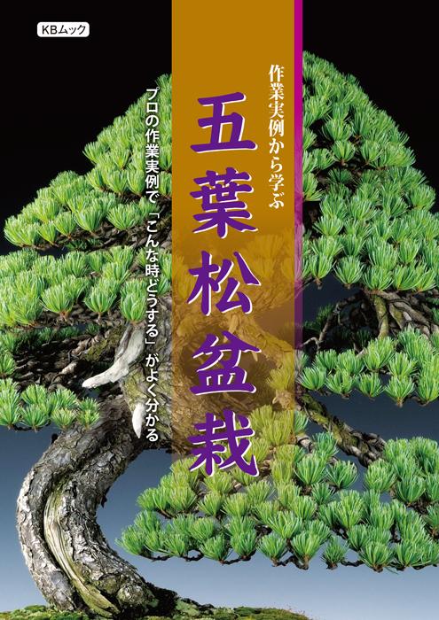 プロの作業実例で 「こんな時」どうするかよく分かる オールカラーの五葉松盆栽の作業ガイド  作業実例から学ぶ五葉松盆栽