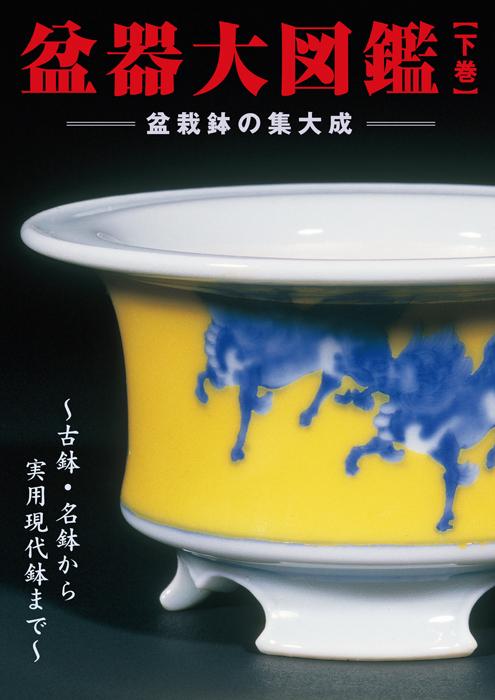 ~古鉢・名鉢から現代実用鉢まで全てを網羅~ 盆栽鉢の集大成  盆器大図鑑 【下巻】