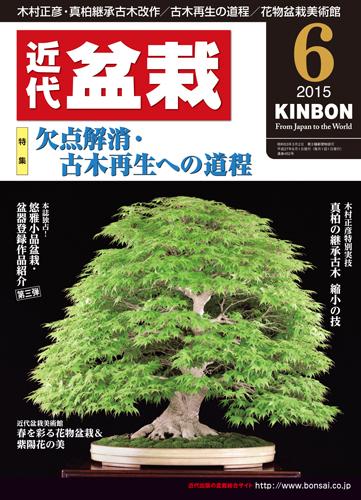 初心者からベテラン愛好家まで 見やすく内容充実の盆栽総合誌 月刊 近代盆栽 2015年6月号 特売 日本最大級の品揃え
