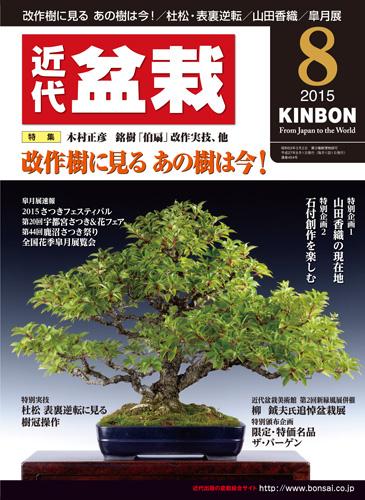 Monthly modern bonsai August 2015