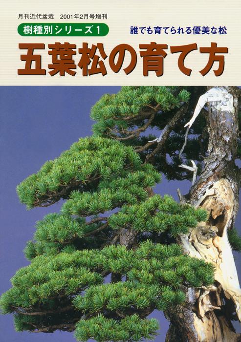 即出荷 初心者にも作業内容がよく分かる 盆栽樹種別シリーズ クリアランスsale!期間限定! 五葉松の育て方