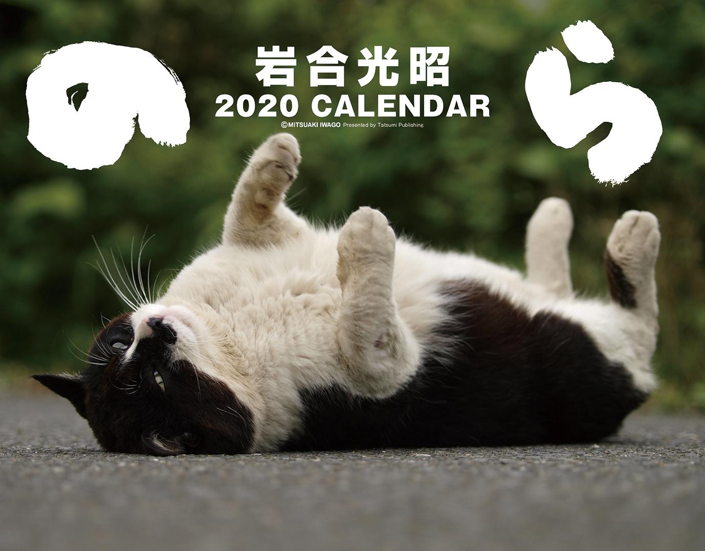 楽天ブックス: 2020猫カレンダー のら - 岩合光昭 - 9784777822911 : 本
