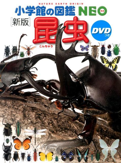 小学館の図鑑NEO昆虫