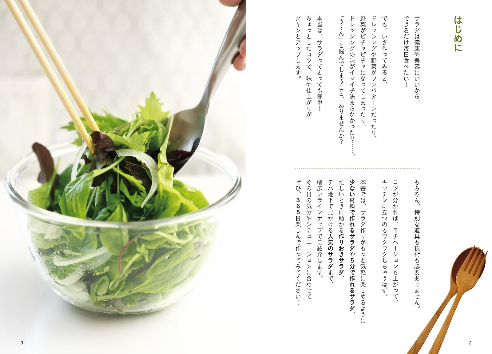 「365日のサラダ」の画像検索結果
