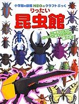 クリアランスsale!期間限定! 小学館の図鑑NEOのクラフトぶっく 新作 りったい昆虫館 神谷正徳 1000円以上送料無料