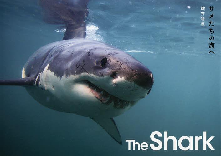 The ランキングTOP10 Shark サメたちの海へ 1000円以上送料無料 鍵井靖章 現金特価
