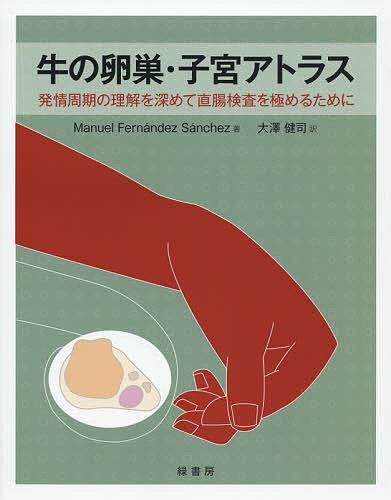 牛の卵巣・子宮アトラス 発情周期の理解を深めて直腸検査を極めるために/ManuelFernandezSanchez/大澤健司【1000円以上送料無料】