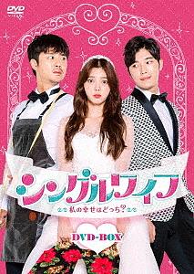 シングルワイフ~私の幸せはどっち?~DVD-BOX/オム・ヒョンギョン【1000円以上送料無料】
