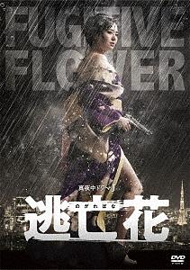 逃亡花 DVD-BOX/蒼井そら【1000円以上送料無料】