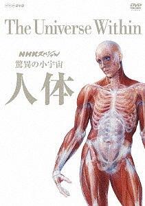 NHKスペシャル 驚異の小宇宙 人体 DVD BOX【1000円以上送料無料】