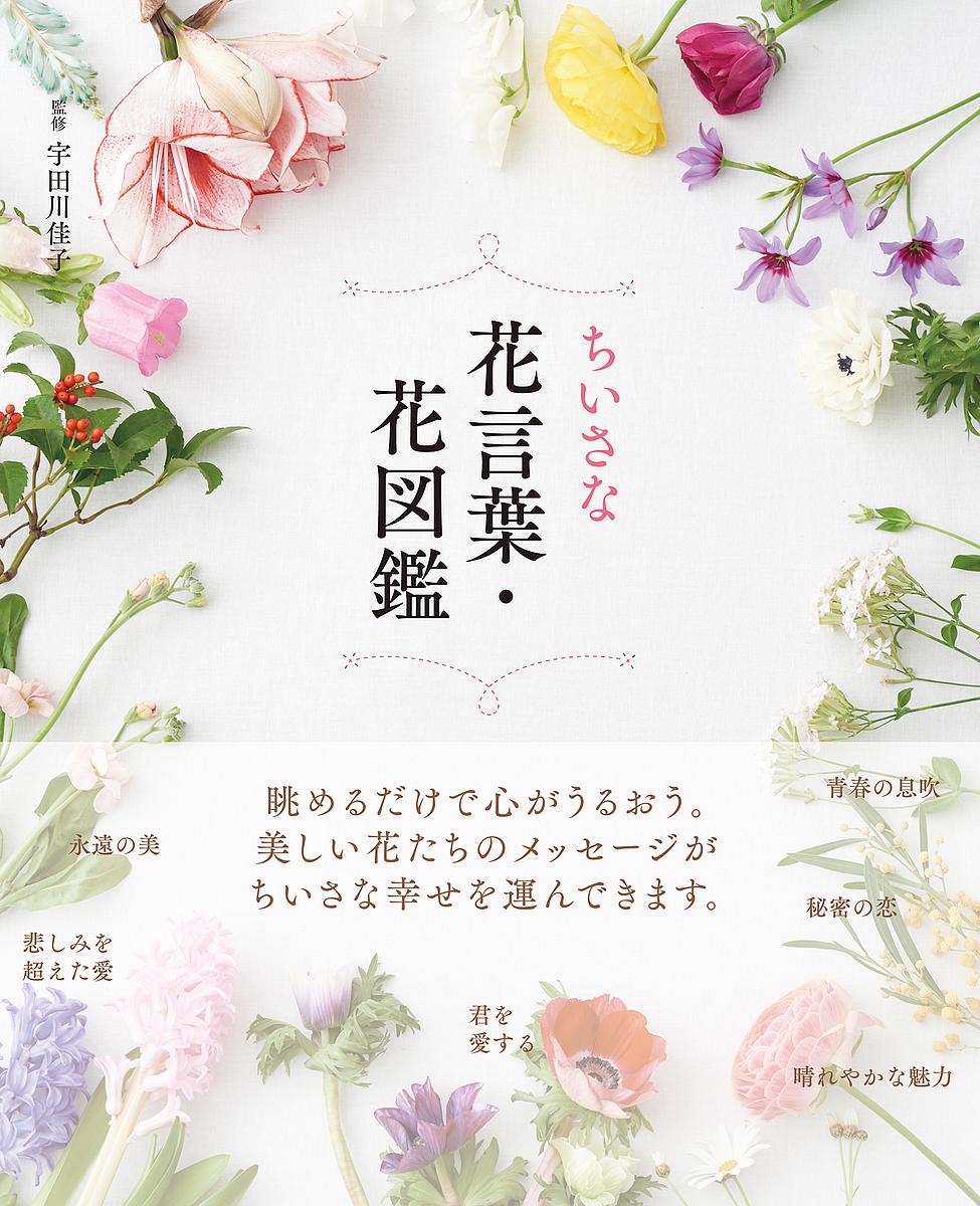 高級 ちいさな花言葉 正規激安 花図鑑 宇田川佳子 1000円以上送料無料