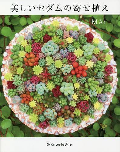 美しいセダムの寄せ植え 安心の定価販売 MAi 1000円以上送料無料 受注生産品