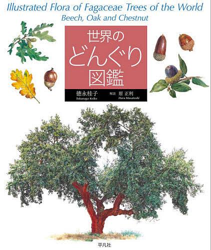 世界のどんぐり図鑑 徳永桂子 1000円以上送料無料 公式ストア 商店