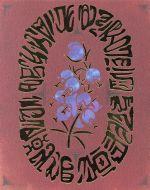 【中古【中古】】 メアリと魔女の花 コレクターズ・エディション(数量限定商品)(4K ULTRA ULTRA HD+Blu-ray Disc) /メアリー Disc)・スチュアート(原作),杉咲【中古】afb, 長岡京市:7bebefbc --- itxassou.fr