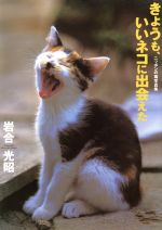 中古 写真集 きょうも いいネコに出会えた 在庫処分 ニッポンの猫写真集 期間限定特価品 afb 岩合光昭