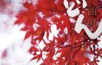 【中古】 西郷どん 完全版 第参集(Blu-ray Disc) /鈴木亮平,瑛太,林真理子(原作),富貴晴美(音楽) 【中古】afb