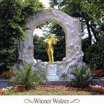 中古 決定盤 憧れのウインナ ワルツ ウィーン 最新 ヴィルトゥオーゼン ライナー ホーネック シャゲール ハンス 安心の定価販売 エーリッヒ vn afb オクセン ペーター