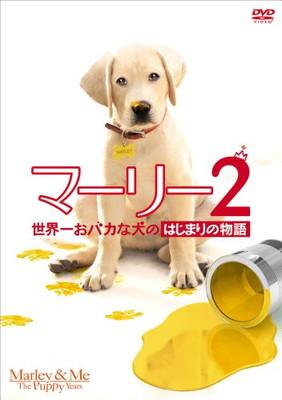 送料無料【中古】マーリー2 世界一おバカな犬のはじまりの物語(前作「マーリー世界一おバカな犬が教えてくれたこと(特別編)」付)(初回生産限定) [DVD] [DVD]