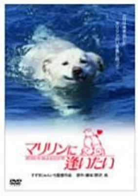 USED【送料無料】マリリンに逢いたい [DVD] [DVD]