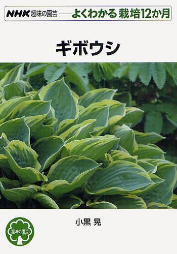 ランキング総合1位 NHK趣味の園芸 よくわかる栽培12か月 お気にいる ギボウシ 小黒晃 3000円以上送料無料