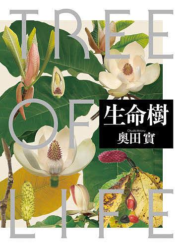 【100円クーポン配布中!】生命樹 TREE OF LIFE/奥田實