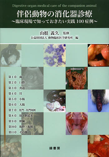 伴侶動物の消化器診療 臨床現場で知っておきたい実践100症例/山根義久/動物臨床医学研究所【合計3000円以上で送料無料】