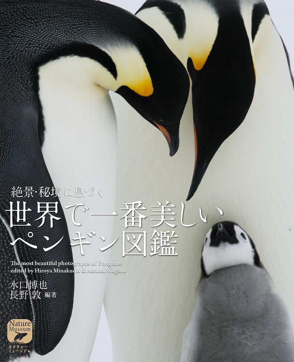 タイムセール ネイチャー ミュージアム 絶景 秘境に息づく世界で一番美しいペンギン図鑑 水口博也 3000円以上送料無料 公式 長野敦
