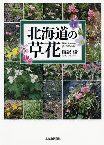 北海道の草花 人気ショップが最安値挑戦 梅沢俊 3000円以上送料無料 店舗