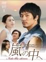 【中古レンタルアップ】 DVD アジア・韓国ドラマ 嵐の中へ 全12巻セット キム・ミンジュン ソン・ユナ
