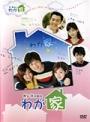 【中古レンタルアップ】 DVD アジア・韓国ドラマ わが家 全7巻セット キム・ジェウォン パク・ソルミ