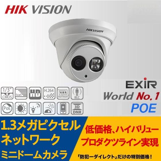 IP CAMERA /DS-2CD2312-I 1.3メガピクセル屋外用 ネットワークミニドームカメラ
