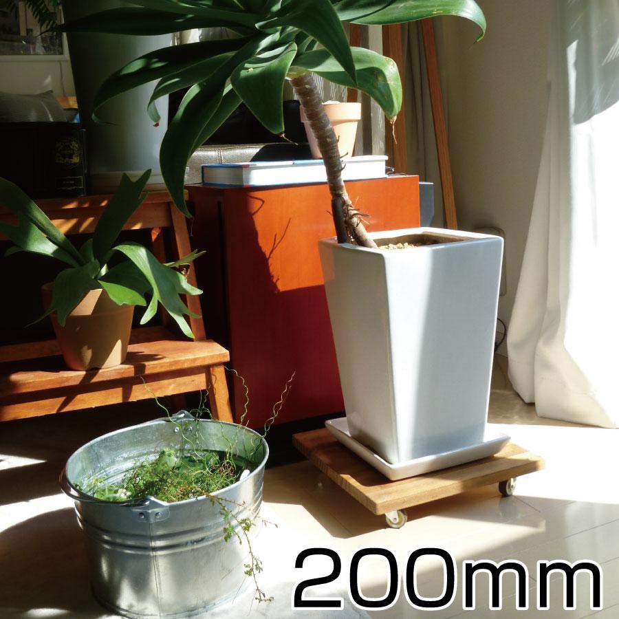 どんなインテリアにもなじむおしゃれなプランターベース 観葉植物の移動に便利 プランターベース 200mmサイズ スタンド 鉢台 鉢置き台 コロ付 キャスター付 移動 木製 鉢受け プレート 花 ガーデン DIY 花 観葉植物 観葉植物用品 その他