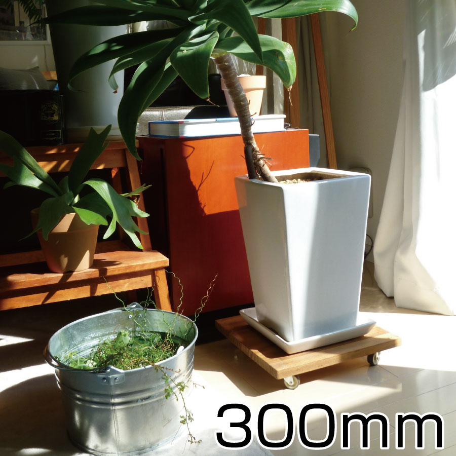 どんなインテリアにもなじむおしゃれなプランターベース 観葉植物の移動に便利です。 プランターベース 300mmサイズ スタンド 鉢台 鉢置き台 コロ付 キャスター付 移動 木製 鉢受け プレート 花 ガーデン DIY 花 観葉植物 観葉植物用品 その他