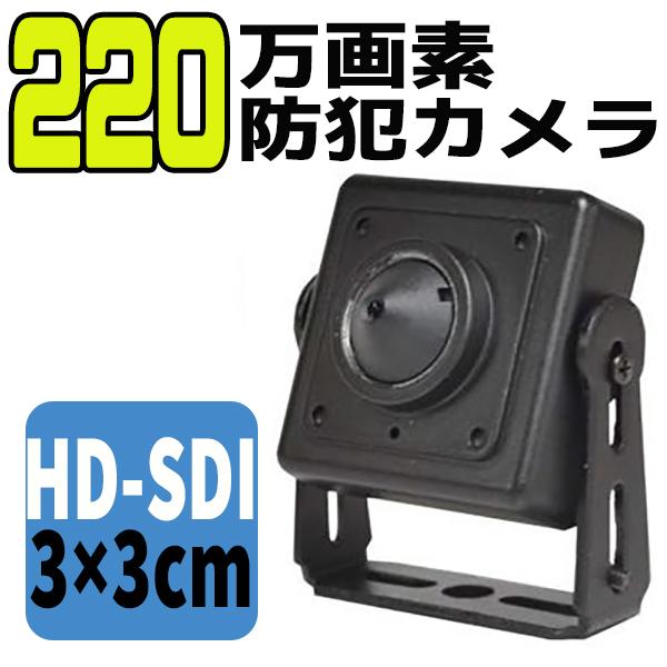 防犯カメラ 防犯 カメラ 録画 220万画素 HD-SDI ピンホールカメラ ALDP-HD220S