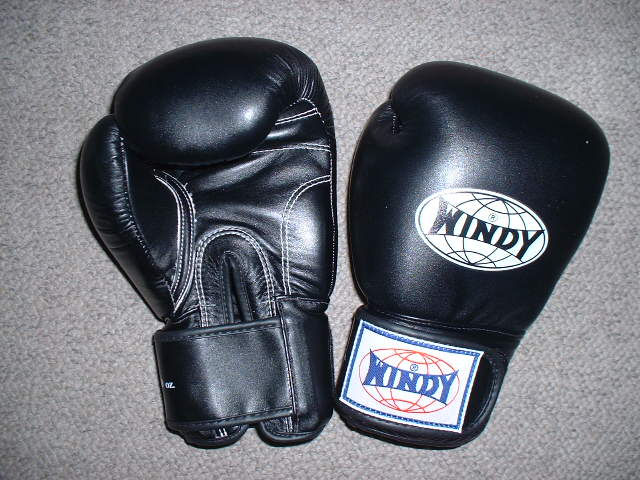 Magic windy boxing gloves 10 ounce mixed martial art Muay Thai k-1