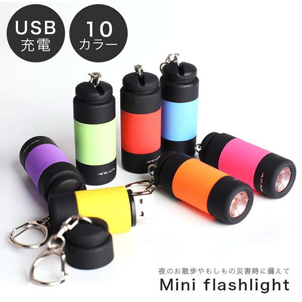 ミニ懐電灯 ライト ポケットライト USB充電式ライト LED LEDキーホルダーライト 新品 懐電灯 キーホルダー ポケットサイズ コンパクトライト コンパク 持ち歩き 防災グッズ コンパクト 便利 入荷予定