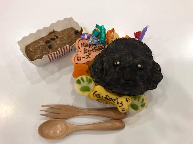 くいしんぼうセット 犬種別お誕生日ケーキミニ 8.5cm レバーブラウニー おもちゃ 在庫がなくなり次第他のおもちゃに変更になります 再入荷/予約販売! 犬用ケーキ ちっちゃい食いしんぼうワンコのバースデイセット お誕生日ケーキ ワンコケーキ 犬の誕生日 犬のプレゼント 手作り 12 バースデーケーキ お祝い 購入 似顔絵 小さいケーキ ペット 犬のおやつ 20~24日のお届け不可 犬ケーキ
